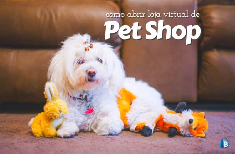 Como montar loja virtual de Pet Shop